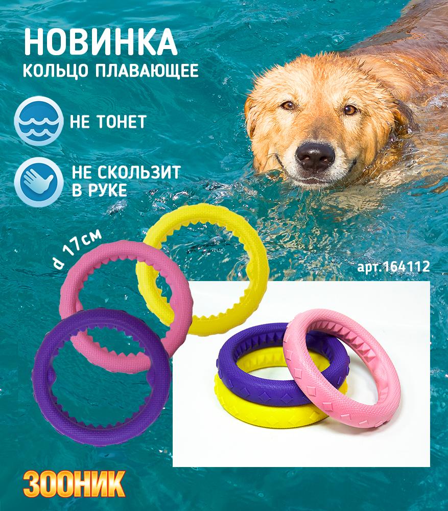 Новинка - кольцо для собак